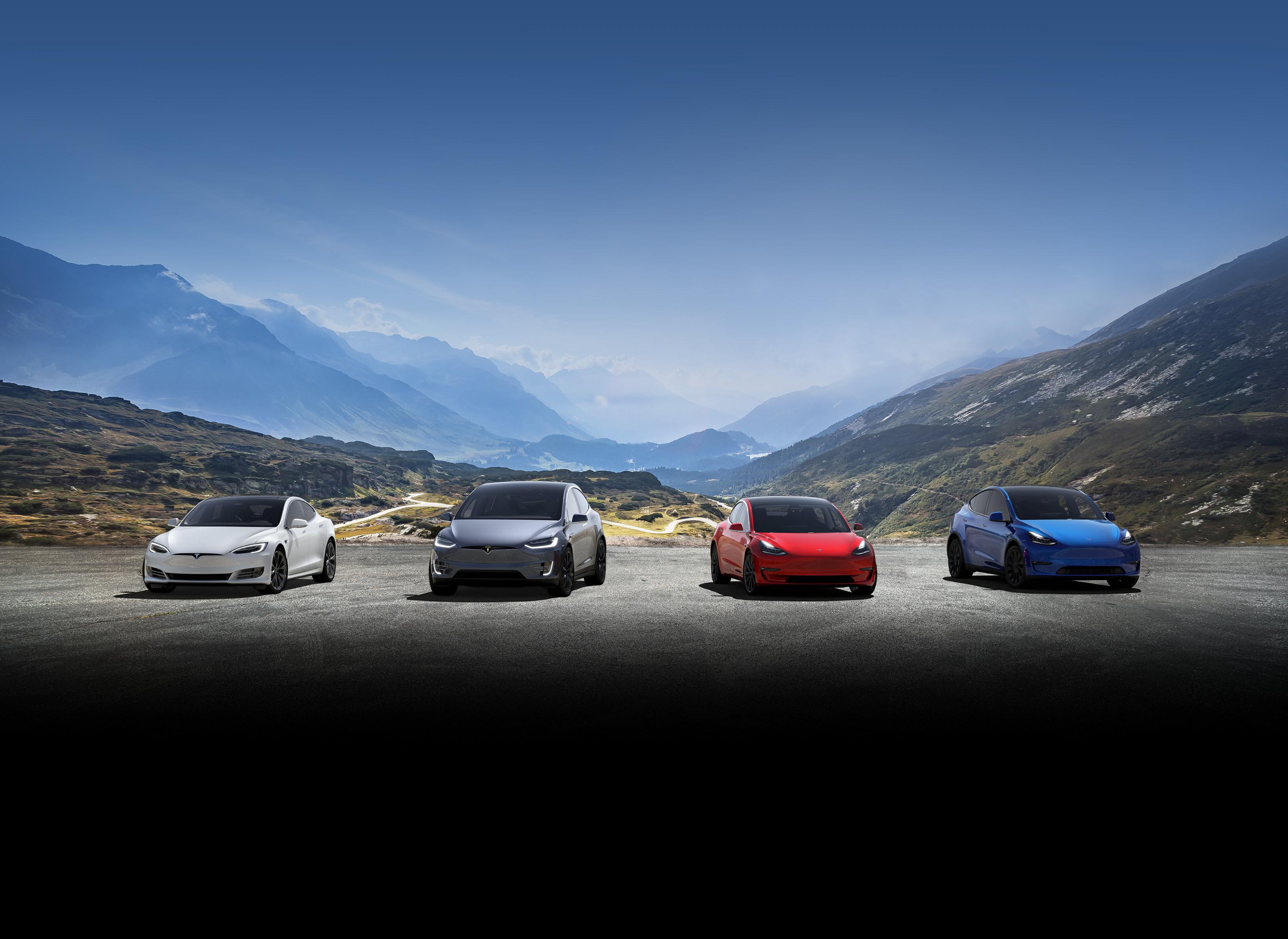 Model S, Model X, Model 3, Model Y