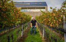 Domaine viticole Letten, Suisse
